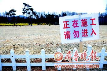 青岛/◥青岛汇泉广场曾是跑马场,现在草坪被翻新。本报记者张晓鹏摄
